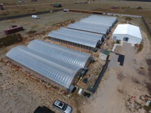 Growing Facility in Colorado for Cannabis